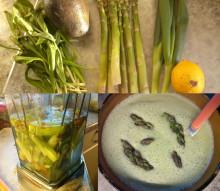 Bianco puro: Suppe aus Grünem Spargel