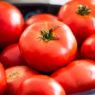 Frische Tomaten im Korb